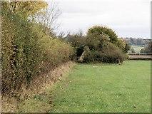 ST9964 : Follow the field edge by Michael Dibb