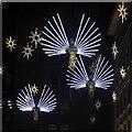 TQ2980 : Carlton Street Christmas Lights 2016 by Oast House Archive