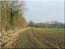 TL6031 : Footpath And Field Edge by Keith Evans
