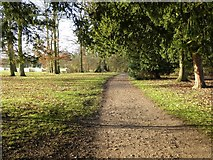 SO8845 : Path through the Shrubbery, Croome Park by Philip Halling