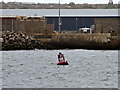 SJ3294 : River Mersey, Canada Buoy by David Dixon