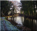 SK6882 : Winter at Lady Bridge by Andy Stephenson