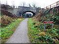 ST4553 : Bridge over The Strawberry Line Cheddar by PAUL FARMER