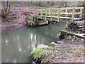 SE3904 : Not much sign of the River Dove stepping stones by Steve  Fareham
