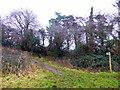ST4858 : Footpath at Burrington Ham by PAUL FARMER