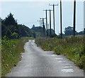 TF4304 : Long Drove at Waldersey by Mat Fascione