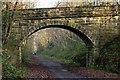 NZ1557 : Derwent Walk through arch of bridge by Trevor Littlewood