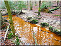 TQ4429 : Stream in the Millbrook Valley by Marathon