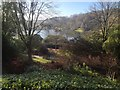 ST7734 : At Stourhead Gardens by Kate Jewell