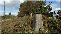 SJ9054 : Trig point at Brown Edge, Staffs by Colin Park