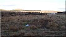 NS6680 : Bog near Johnnie's Dam by Richard Webb