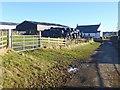 NY8133 : Herdship Farm by Oliver Dixon