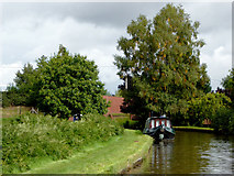 SJ4534 : Llangollen Canal at Hampton Bank in Shropshire by Roger  Kidd