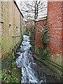 SK5461 : Town Mill, Mansfield, Notts. by David Hallam-Jones
