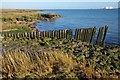TL9708 : The Remains of Tollesbury Pier by Glyn Baker