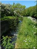 SK8336 : Derelict Stenwith Bottom Lock No 13 by Mat Fascione