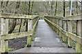 J2890 : Boardwalk, Sixmilewater Park, Ballyclare (January 2017) by Albert Bridge