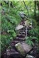 SH3331 : Steps up to Mynydd Tir-y-cwmwd by Steve Daniels