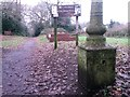 SZ1492 : Tuckton: lamppost base on footpath I23 by Chris Downer