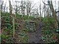 SE3214 : Waymarked path in Seckar Wood by Christine Johnstone