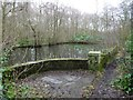 SE3214 : Warner Gothard's swimming pool, Seckar Wood by Christine Johnstone