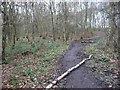 SE3214 : Permissive path, on the north side of Seckar Wood by Christine Johnstone