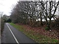 SZ1294 : Townsend: footpath K45 and a glimpse of Cheshire Drive houses by Chris Downer