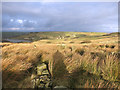 SE0433 : Supposedly the Bronte Way by Des Blenkinsopp