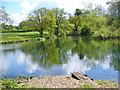 TQ0451 : Clandon Park - Angling Pond by Colin Smith