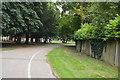 SU8692 : Track, The Rye by N Chadwick