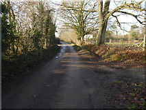 TQ2116 : Looking west on Furners Lane towards Henfield by Shazz