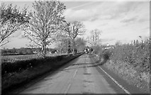 ST8081 : Station Road, Badminton, Gloucestershire 2012 by Ray Bird