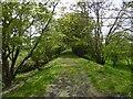 NU0321 : Trackbed, Cornhill Branch by Richard Webb