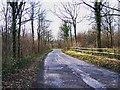 SO8060 : Road near Monkwood Green, Worcs by P L Chadwick