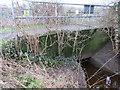 SJ4165 : Footbridge and culvert by the River Dee by John S Turner