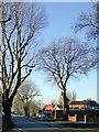 SJ9200 : Park Lane near Newbolds, Wolverhampton by Roger  Kidd