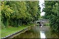 SJ4333 : Llangollen Canal north-west of Lyneal, Shropshire by Roger  Kidd