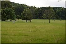 SU8792 : The Rye & Holywell Mead by N Chadwick