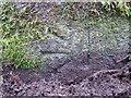 SJ4165 : Bench mark on a fallen CWC marker post by John S Turner