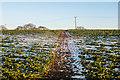 TR2742 : Footpath to St Radegund's Abbey by Ian Capper