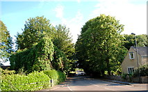 ST8081 : Badminton Rd, Acton Turville, Gloucestershire 2014 by Ray Bird