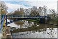 TR1634 : Ladies Walk Bridge by Ian Capper