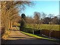 TQ4051 : Pains Hill, near Limpsfield by Malc McDonald