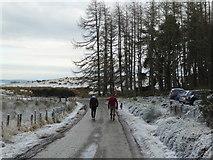 NH6271 : A winter's walk to Cnoc Fyrish by Alpin Stewart