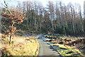 SH7128 : Coed-y-Brenin Forest Track by Jeff Buck