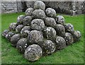 TQ6404 : Pevensey Castle: A neat pile of stone ball trebuchet ammunition recovered from the moat by Michael Garlick
