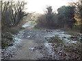 TQ4251 : Greensand Way near Limpsfield Chart by Malc McDonald