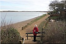 TM2844 : A Path By The River Deben by Peter Jeffery