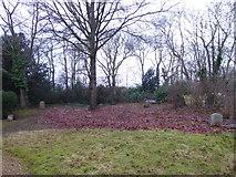 TQ0241 : St Andrew, Grafham: churchyard (a) by Basher Eyre