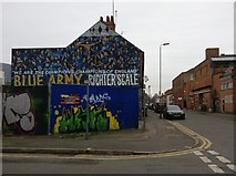 SK5803 : Mural on Burnmoor Street, Leicester by Mat Fascione